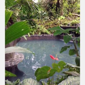 Costa Rica Trip Report - Day 5 - Part 3